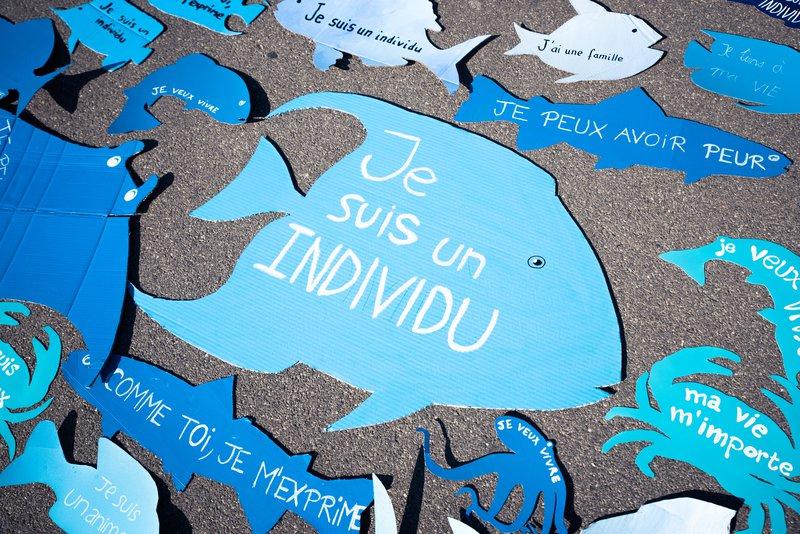 Journée mondiale pour la fin de la pêche 2021